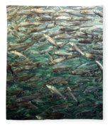 Fishes Fleece Blanket