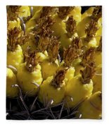 Fishhook Barrel Cactus Fruit Fleece Blanket
