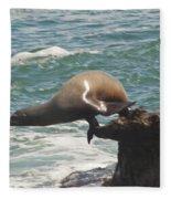 Fishing Sea Lion Fleece Blanket