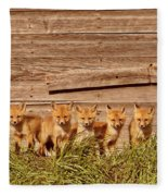 Five Fox Kits By Old Saskatchewan Granary Fleece Blanket