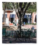 Flagler Park Fleece Blanket