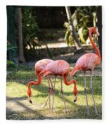 Flamago Twins  Fleece Blanket