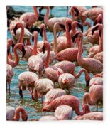 Flamboyance Of Flamingos Fleece Blanket