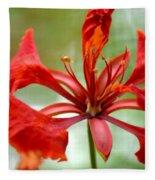 Flamboyant Beauty Fleece Blanket