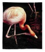 Flamingo Scratching Head Fleece Blanket