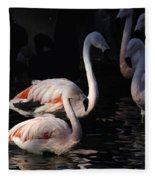 Flamingo Study - 2 Fleece Blanket