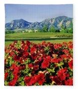 210546-v-flatirons And Flowers V  Fleece Blanket