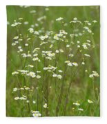 Fleabane In The Meadow Fleece Blanket