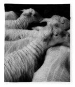 Fleeced Fleece Blanket