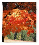 Flickering Sunlight Fleece Blanket