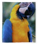 Flirtacious Macaw Fleece Blanket