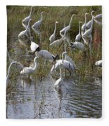 Flock Of Different Types Of Wading Birds Fleece Blanket