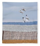 Flock Of Gulls Fleece Blanket