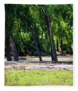 Flood Plain Fleece Blanket