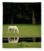 Flooded Field In May Fleece Blanket