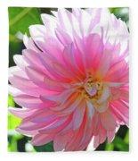 Floral Art Prints Pink Dahlias Sunlit Baslee Troutman Fleece Blanket