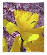 Floral Fine Art Daffodils Art Prints Spring Flowers Sunlit Baslee Troutman Fleece Blanket