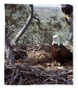 Florida: Bald Eagles, 1983 Fleece Blanket