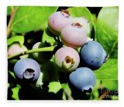 Florida - Blueberries - On The Bush Fleece Blanket