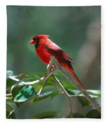 Florida Cardinal Fleece Blanket