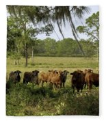 Florida Cracker Cows #3 Fleece Blanket