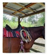 Florida Cracker Horse Fleece Blanket