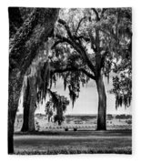 Florida Interior From Bok Gardens Fleece Blanket