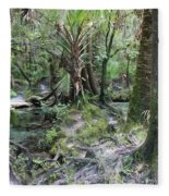 Florida Landscape - Lithia Springs Fleece Blanket