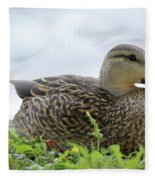 Florida Mallard Fleece Blanket