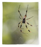 Florida Spider Fleece Blanket