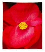 Flower 8 Fleece Blanket