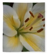 Flower Close Up 1 Fleece Blanket