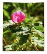 Flower Of Eglantine - 2 Fleece Blanket