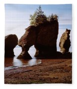 Flower Pot Rocks On The Beach, Hopewell Fleece Blanket