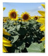 Flower Sunflower,yellow Flower, Fleece Blanket