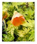 Flowering Maple Fleece Blanket