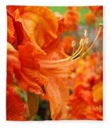 Flowers Azalea Garden Orange Azalea Flowers 1 Giclee Prints Baslee Troutman Fleece Blanket