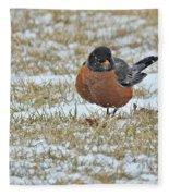 Fluffy Robin In Snow Fleece Blanket