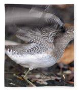 Flutter Fleece Blanket