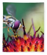 Fly Fleece Blanket
