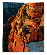 Flying Buttress 06-034 Fleece Blanket