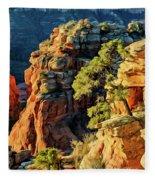 Flying Buttress 06-045 Fleece Blanket