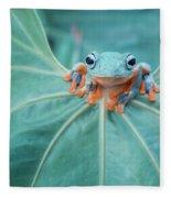 Flying Frog Wallace Fleece Blanket