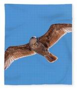 Flying Gull Fleece Blanket