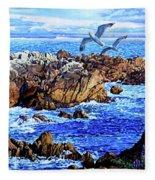 Flying High Over California Fleece Blanket