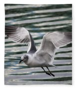 Flying Seagull Fleece Blanket