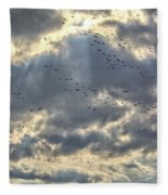 Flying Through Sun Rays Fleece Blanket