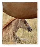 Foal And Mare In A Saskatchewan Pasture Fleece Blanket