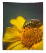 Focused June Beetle Fleece Blanket