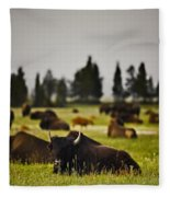 Foggy Herd Fleece Blanket